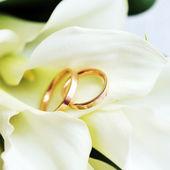 Anelli e bouquet sposa — Foto Stock