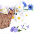 Basket of easter eggs — Stock Photo #40508421
