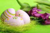 Easter eggs  and tulip — Foto Stock