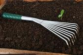 Gardening tools — 图库照片