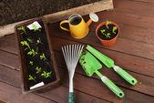Ferramentas de jardinagem — Fotografia Stock