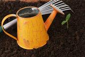 Attrezzi da giardinaggio — Foto Stock