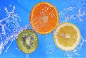 Slices of kiwi,  orange and  lemon — Stock Photo