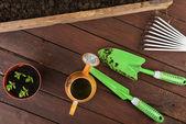 Narzędzia ogrodnicze — Zdjęcie stockowe