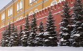 Partie de mur en briques rouges du kremlin avec sapins — Photo