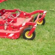 Lawnmower cuts a green garden grass closeup — Stock Photo
