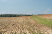 Krajina s orná pole — Stock fotografie