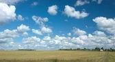 Paisagem rural de verão com nuvens, prado e vila — Fotografia Stock