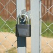 Lock hangs on fence closeup — Stock Photo