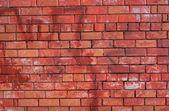 Z czerwonej cegły ściany przedniej widok zbliżenie — Zdjęcie stockowe