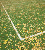Sports ground on open air in autumn — Stock Photo
