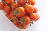 Tomates cerises en conteneur — Photo