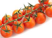 Cherry tomatoes isolated — Stock Photo