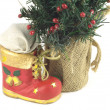 New Year tree and Christmas bootee isolated — Stock Photo