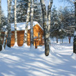 Wooden house in winter forest — Stock Photo #19193311