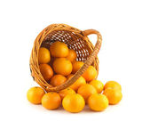 Strewed tangerines from wicker basket lays isolated — Stock Photo