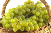 Grape bunch in wicker basket isolated close up — Foto Stock