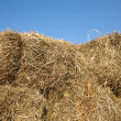 Stock Photo: Dry hay against clear cloudless blue sky closeup