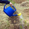 Woman's hand waters from blue plastic watering can plants in garden closeup — Stock Photo