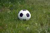White and black ball for playing soccer in high green grass closeup — Stock Photo