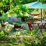 Garden design — Stock Photo