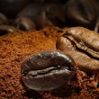 Two coffee beans — Stock Photo