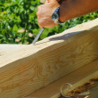 Stock Photo: Carpenter hands