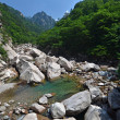 Forest river in Seoraksan, Korea — Stock Photo #14014222