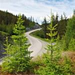 Passage, mountain road, Altai, Russia — Stock Photo