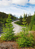 проход, горная дорога, алтай, россия — Стоковое фото