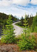 Průchod, horská silnice, altaj, rusko — Stock fotografie