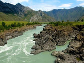 Berg floden katun, altai, ryssland — Stockfoto