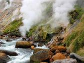 Valley of Geysers, Kamchatka, Russia — Stock Photo