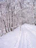 снежная дорога — Стоковое фото