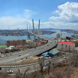Panoramof Vladivostok, bridge — Stock Photo #24626443