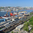 Port Vladivostok, panoramof container terminal, Russia — Stock Photo #30835051
