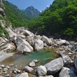 Forest river in Seoraksan, Korea — Stock Photo #31905173