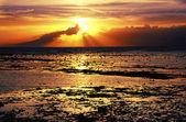 海,低潮,美丽的海景,太平洋的落日 — 图库照片