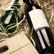 Wine bottles in straw — Stok fotoğraf