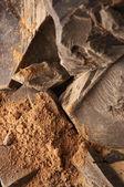 Kakaové hmoty a kakaového prášku — Stock fotografie