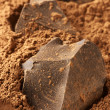 Cocoa mass and cocoa powder — Stock Photo