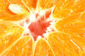 Close-up of sliced tangerine — Stock Photo