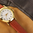 Wrist watch — Stockfoto #21329217