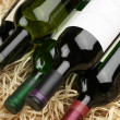 Wine bottles in straw — Stockfoto #30785867