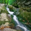 Mountain stream — Stock Photo #36315855