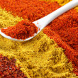 Assorted powder spices — Stock Photo
