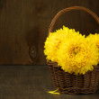 Chrysanthemum in basket — Stock Photo