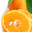 Fresh tangerines close-up — Stock Photo