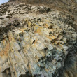 Stock Photo: Columnar jointed rock
