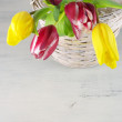 Tulips in basket — Stock Photo